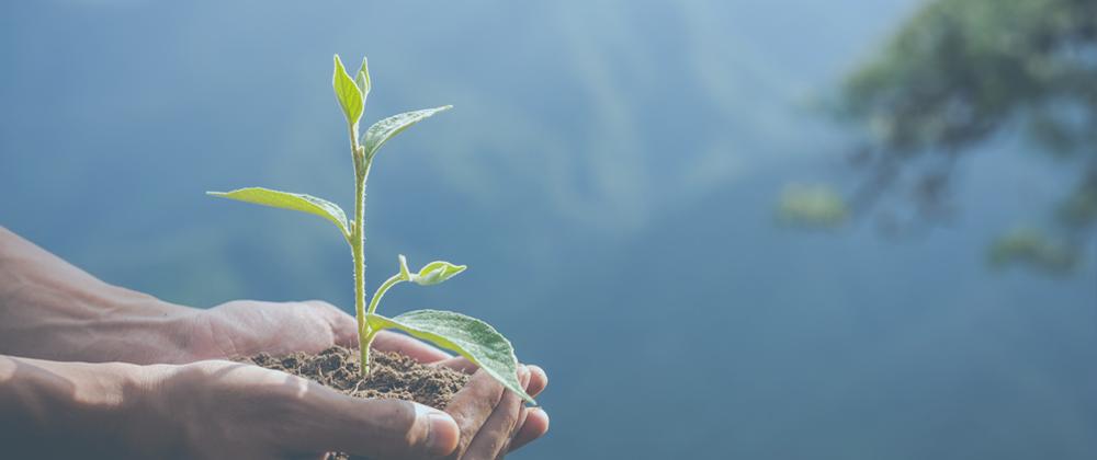 sistema ecológico de trazabilidad